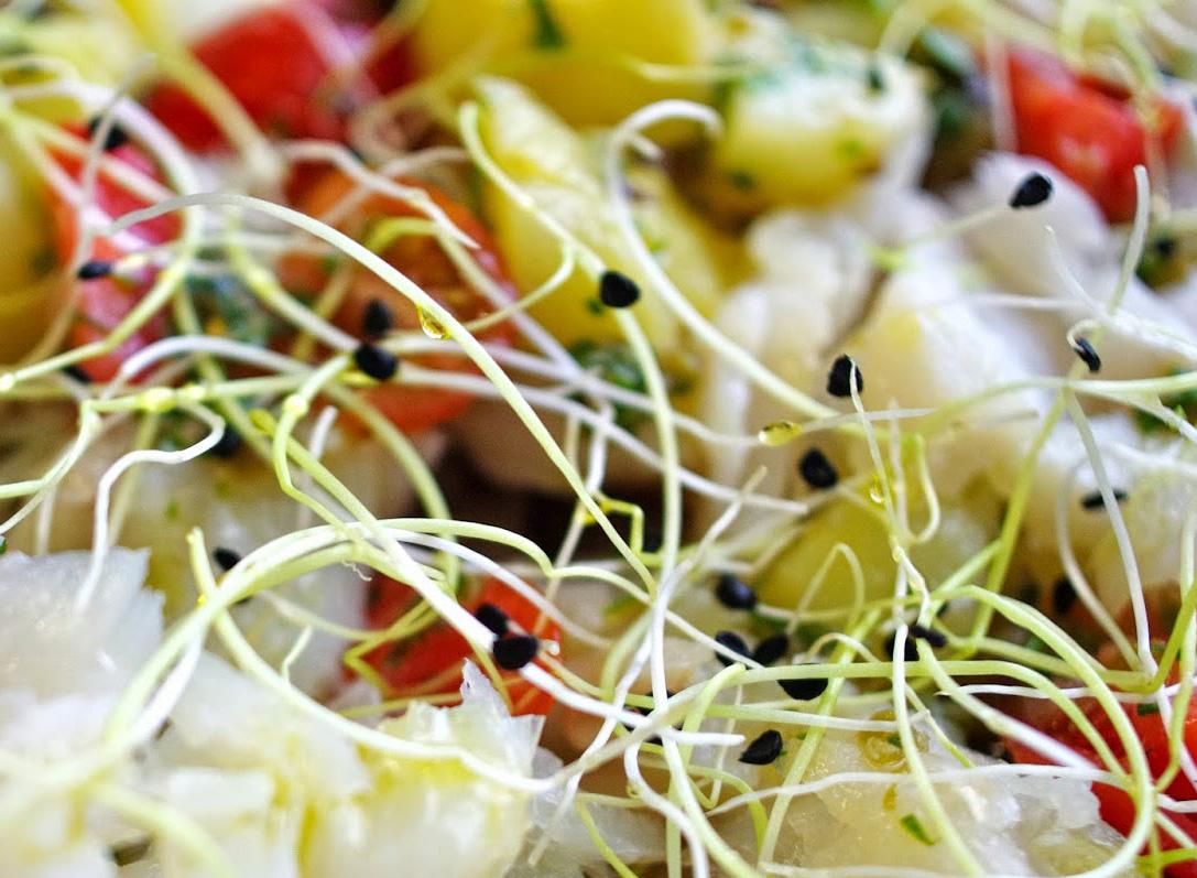 Insalata di germogli e verdure marinate