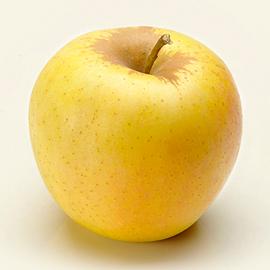 Mela rossa mela fuji mela golden che variet di mele - Immagini stampabili di mele ...